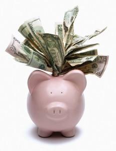 Piggy Bank Cash